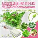 ミニ水耕菜園キットBM ベビーレタスミックス+お好きなタネ4種類から1つ選べる +培地シート2枚付き +お掃除ブラシ付…