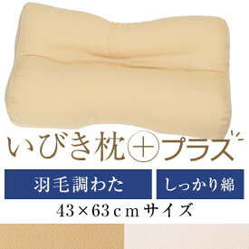 いびき枕プラス 43 × 63 cm サイズ 洗える 綿 わた 綿ツイル 羽毛調 通気性 まくら マクラ 枕 日本製 いびき防止 いびき対策