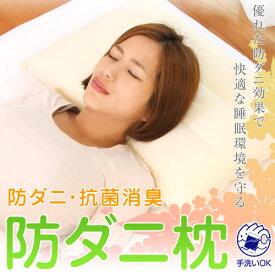 防ダニ 枕 防ダニ枕 ソフトパイプ 43 × 63 cm 洗える 枕カバー付 アレルギー対策 ダニ対策 まくら 日本製 【防ダニ枕特集】