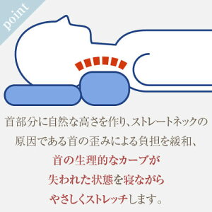 ストレートネック枕送料無料ストレートネック枕プラス43×63cmサイズ高さ調節洗える防ダニアレルギー綿わた防臭炭パイプ通気性ダブルラッセルまくらマクラネックフィットネックフィット枕首肩スマホスマートフォン首こり肩こり日本製国産