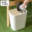 分別ゴミ箱 ルクレール ホワイト( ごみ箱 ゴミ箱 分別 ダストBOX くずかご ダストボックス )