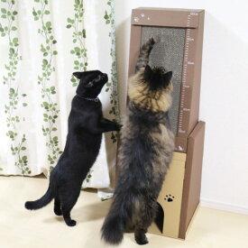 キャットハウス 高さ100cm またたび 爪とぎ付き 積み重ね 猫 ペットハウス nekoto 爪とぎハウス ( ネコ ねこ 猫用品 爪とぎ 屋内 室内 猫用 ハウス 目盛り付き つめとぎ 爪砥ぎ 爪 とぎ 爪磨き つめ ダンボール 1m 100 軽量 )