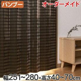 竹 カーテン サイズオーダー B-1540 ニュアンス 幅251〜280×高さ40〜70 ( 送料無料 バンブーカーテン 目隠し 間仕切り バンブー カーテン シェード 日よけ すだれ 仕切り 天然素材 おしゃれ 和室 洋室 )