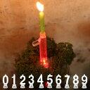 キャンドル LED 数字 ナンバーキャンドル 誕生日 0 1 2 3 4 5 6 7 8 9 ダルトン DULTON ( ナンバーキャンドル キャン…