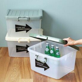 収納ボックス L 幅45×奥行38×高さ26cm フタ付き プラスチック 日本製 ( 収納ケース 収納 ケース ボックス おもちゃ箱 玩具 ストッカー キッチンストッカー 小物収納 小物入れ おもちゃ入れ おもちゃ 小物 おしゃれ )