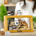 HUGO ヒューゴ ミニショーケース 木製 ( ショーケース 調味料収納 キッチン収納 ディズプレイケース スパイスラック …