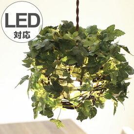 ペンダントライト 1灯 ラタン アイビー グリーン 天井照明 LED対応 CT触媒 ( 送料無料 照明 照明器具 おしゃれ ペンダント LED アーティフィシャルグリーン 葉っぱ リーフ ライト 電球 引っ掛けシーリング 壁スイッチ )