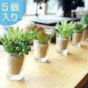 人工観葉植物 消臭アーティフィシャルグリーン リトルサキュレントファミリー 5個入り ( 造花 フェイクグリーン イン…