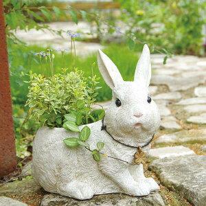植木鉢 ラビッツファーム L ( プランター 鉢植え 鉢 屋外 室内 ガーデニング 観葉植物 グリーンポット フラワーポット ガーデン 園芸 花 庭 )