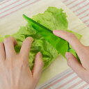 子供用包丁 切れないナイフ delijoy デリジョイ ツリーナイフ 自立タイプ ( プラスチック製 包丁 ほうちょう )