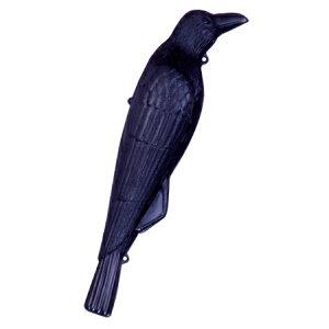 鳥害対策 カラスよけ カラス撃退 コワガラス (鳥よけ ハトよけ 防鳥用品 園芸 烏 鳥害 )