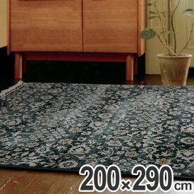ラグ カーペット アクアホーム 200×290cm ( 送料無料 ラグマット 絨毯 じゅうたん 2畳 ホットカーペット対応 床暖房 マット 花柄 ボタニカル 植物 エレガント クラシック )