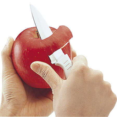 果物ナイフ さや付きフルーツナイフ 包丁 中 ステンレス製 ( 果物包丁 ぺティナイフ ほうちょう )