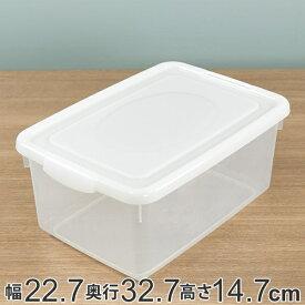 収納ケース 幅22.7×奥行32.7×高さ14.7cm フタ付き プラスチック 収納ボックス ( クローゼット収納 ふた付き 小物 収納 小物ケース ボックス 日本製 キッチンストッカー ストッカー 取っ手付き キッチン収納 )