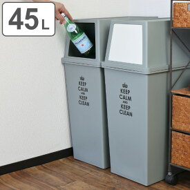ゴミ箱 分別 積み重ねゴミ箱 スリム 45リットル ( ごみ箱 ふた付き ダストボックス スタッキング 45L 45l ふた付 前開き 蓋付き プラスチック製 くずかご ダストBOX 分別ゴミ箱 分別ごみ箱 )