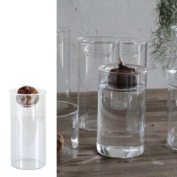 フラワーベース BULB VASE LONG ( 花瓶 バルブベース 鉢 球根 水栽培 ヒヤシンス )