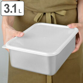 保存容器 アルミ保存容器 深型 大 3.1L 蓋付き ( アルミ製 冷凍OK 冷蔵庫 食品保存 3リットル 3L キッチン用品 キッチン雑貨 製菓道具 )