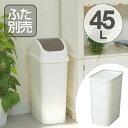 ゴミ箱 スリム ダストボックス レコロ 本体 45L ( ごみ箱 くず入れ トラッシュボックス リビング キッチン トラ…
