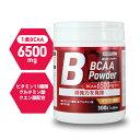 ボディオン BODYON BCAAパウダー マンゴー風味 300g 30食分 ダイエット タンパク質 アミノ酸 女性 男性 筋トレ アミノ…