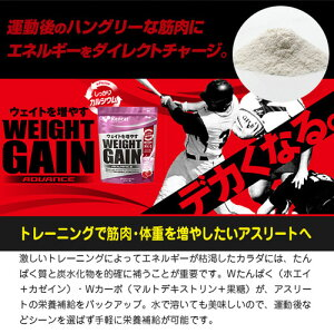 ◆Kentai(ケンタイ)ウェイトゲインアドバンスストロベリー風味3kg◆プロテイン全部【smtb-s】【RCP】