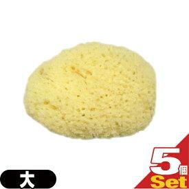 (ネコポス全国送料無料)(天然スポンジ)ユタカ 天然海綿スポンジ(フェイススポンジ) 大(約5〜7cm)×5個セット/(NATURAL SEASPONGE ナチュラル・シースポンジ) - お肌に優しい海からうまれた天然海綿スポンジ。【smtb-s】