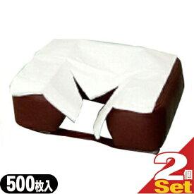 (あす楽対応)(清潔な肌触りで耐水性紙)フェイスペーパーY字カット 500枚入りX2個セット(SB-216A) - 衛生的・吸水性抜群