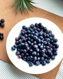 【送料無料】会津美里町産 冷凍ブルーベリー 大粒 無農薬 2kg