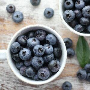 【送料無料】国産 ブルーベリー 冷凍 会津産 約2kg 栽培期間中農薬不使用