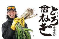 【農家直送】佐藤忠保の「とろねぎ」3kg(13〜17本入り)会津産雪下ねぎ越冬ねぎ