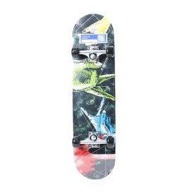 【アウトレット】アルペンセレクト Alpen select エクストリームスポーツ ボード/スケート JP-3943YX FIN 7746901307