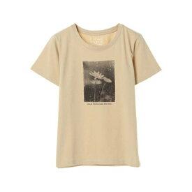 イーハイフンワールドギャラリー E hyphen world gallery モノトーンフォトプリントTシャツ (Beige)