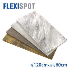 FlexiSpot フレキシスポット スタンディングデスク用天板 テーブルDIY天板パソコンデスク用120*60cm