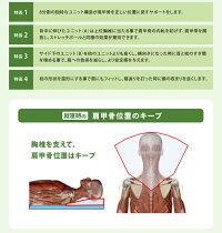 【送料無料】肩ストレッチ枕