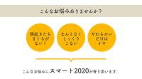 【枕ランキング1位】新発売スマート2020