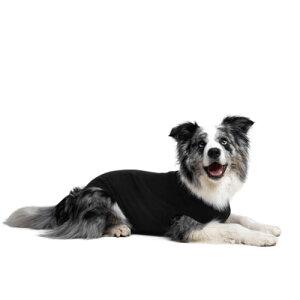 Suitical リカバリー・スーツ 犬用 Sサイズ