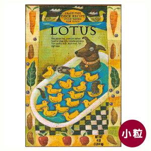 【正規輸入品】LOTUS(ロータス) ドッグフード グレインフリーダックレシピ 小粒 犬用 2.27kg