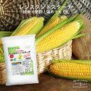 レジスタントスターチ パウダー 300g 不溶性食物繊維 食物繊維 粉末 パウダー 難消化性でんぷん デンプン LOHAStyle […