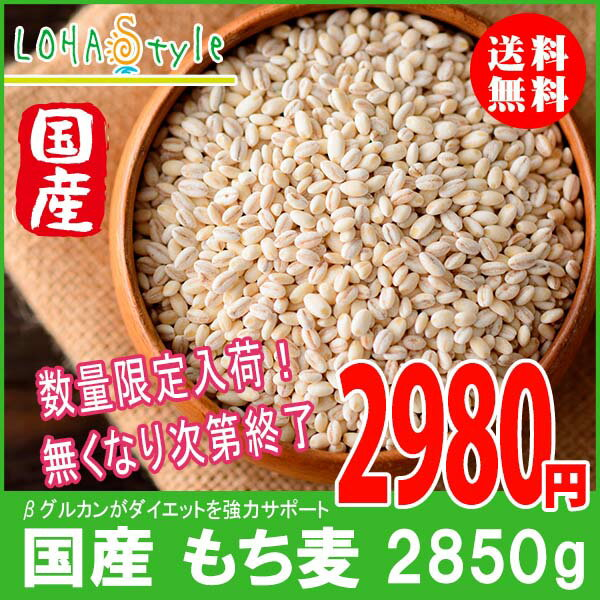 もち麦 国産 2850g(950g×3袋) モチプリで美味しく健康生活 ご飯に混ぜる麦 LOHAStyle