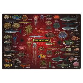 ザ・アクセス 海の危険な生き物 下敷き(A4サイズ,図鑑タイプ)危険な海の生物60種類を網羅!海水浴にも危険が潜んでいる?! 人も襲う凶暴なサメ 毒針で身を守る魚 食べると死に至る魚 触手が怖い毒クラゲなど 文房具/雑貨/勉強/プレゼント/おもしろグッズ/ギフト/小学生