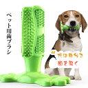 即納 犬歯ブラシ ペット用 歯ブラシ 子犬かむ玩具 犬用歯ブラシ 犬用歯磨きおもちゃ 犬歯ブラシ 犬用 デンタルケア用…