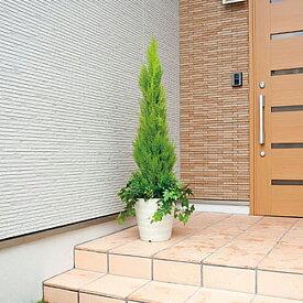 ★送料無料★ ゴールドクレスト H140cm 人工 人工観葉植物 光触媒 鉢植え アートグリーン インテリアグリーン 3A5702-360