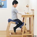 バランスチェア デスクチェア パソコンチェア 膝あて付チェア スレッドチェア 椅子 イス チェア 布張りチェア 木製フレーム 家具 送料無料 SLED-1
