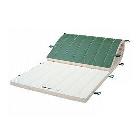 体操マット 滑り止め 抗菌 学校 体育用品 S-9665