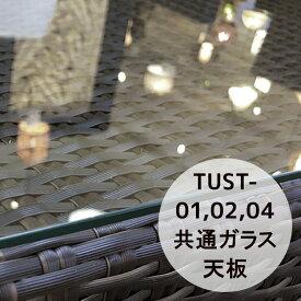 トゥバン TUST-01/02/04用共通ガラス天板 オプション 屋外 ( バリ アジアン リゾート インテリア おしゃれ モダン ) 【TUST-GL-40SQ】