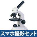 学習用 顕微鏡 子供用 学習用 2WAY マイクロスコープ 40X-800X #800 自由研究 生物顕微鏡 10歳以上