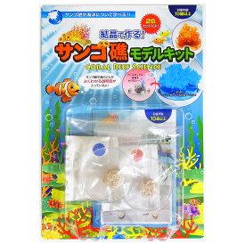 結晶で作る!サンゴ礁モデルキット 実験セット 理科 子供 科学 実験キット 工作 小学生 こども おもちゃ おすすめ 自由研究 新日本通商 室内