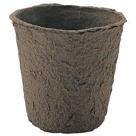 苗床 [ポット] 2748 鉢にセットするだけ、エコ容器 学習教材 生活科 花 ガーデニング 学習教材 理科 植木 ポット