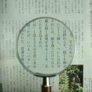 拡大鏡 [手持ちルーペ 虫眼鏡 虫めがね 天眼鏡] デラックスルーペ 1331 2.5倍 75mm 池田レンズ ルーペ 拡大鏡