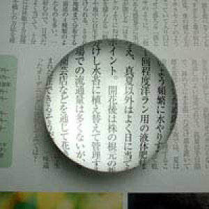 ペーパーウェイト 文鎮 ルーペ 1880 5倍 60mm ホワイトガラス ルーペ 拡大鏡 虫眼鏡 池田レンズ