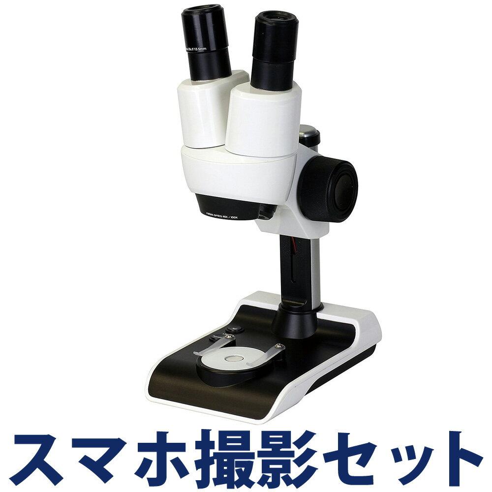 【15日限定クーポン配布中】顕微鏡 スマホ 100倍 双眼 小学生 子供 学習 セット 夏休み 自由研究 実験 マイクロスコープ KENKO ケンコー ドゥネイチャー アドバンス STV-A100SPM クリスマスプレゼント